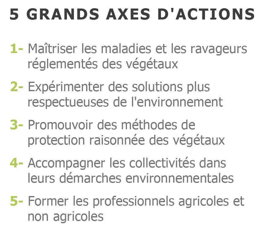 5-axes