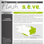 flash-seve-1