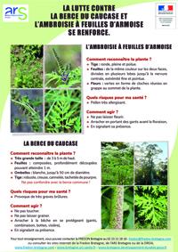 vignette-Lutte plantes invasives