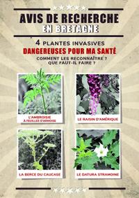 Plaquette 4 plantes invasives